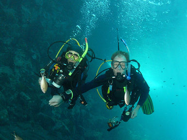 SCUBA diving in St. Vincent and the Grenadines